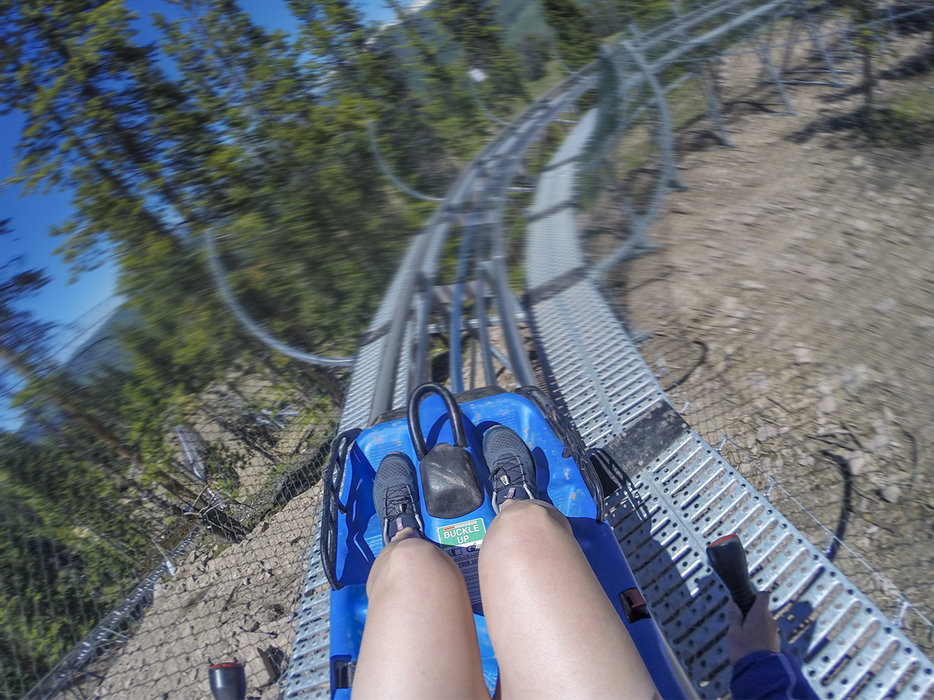 The Vail Forest Flyer Mountain Coaster follows the natural contours of the landscape as it winds 3,400 feet down the mountain. - © Andrew Taylor, Vail Resorts