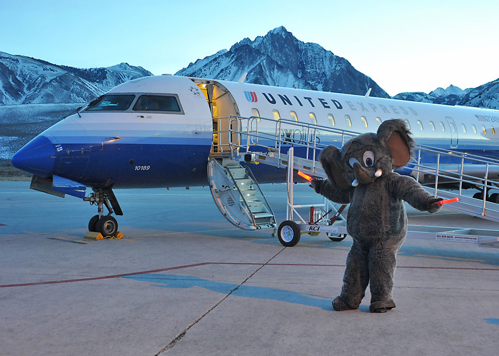 Woolly knows whats up: Air Travel to California's most popular ski destination is now easier than ever before - © Tim LeRoy