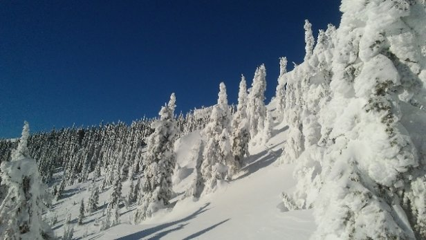 Whitefish Mountain Resort - Beautiful sunshine with still powder hiding around.  - © anonymous