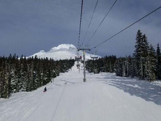 Timberline Lodge - Great day at Hood! - © anonymous