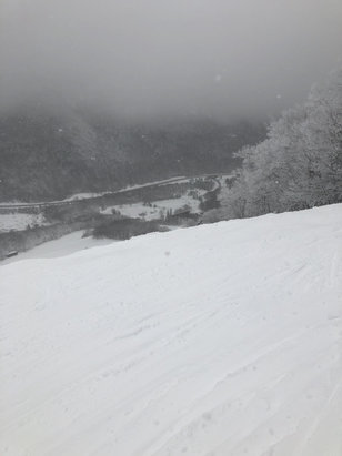 Cannon Mountain - Not bad on front. Skied off by noon due to quad not running 