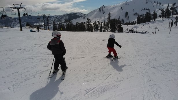 Squaw Valley - Alpine Meadows - Excellent day to teach without the support harness. Snow was so soft.  - © SeaKo