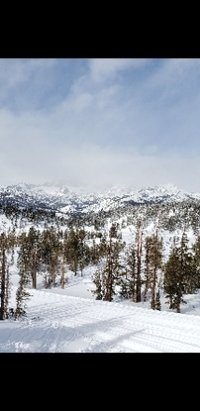 Mammoth Mountain Ski Area - what a fun couple of days.. The snow here just keeps coming.  - © Craig Hinkle