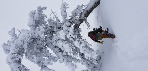 Snowbasin - Amazing powder! No lines! Less than ideal viability but a wonderful day with constant snowfall  - © Mallorie