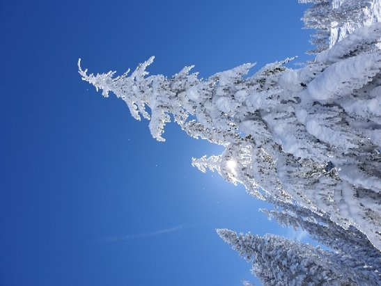 Sugar Bowl Resort - super day skiing, and great photo opportunities too ! - © Phil