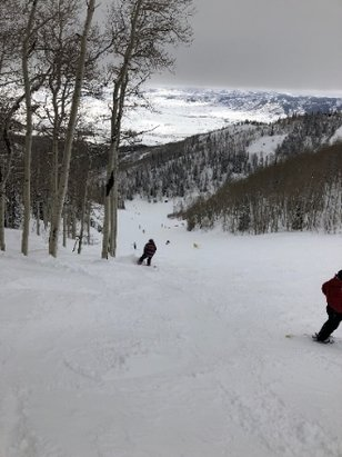 Steamboat - Great conditions all week. plenty of powder stashes.  Shuttle services are awesome.   - © MarkShark