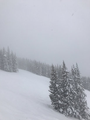 "Vail - Skied Monday, 3/11. Partly cloudy turned into heavy snowfall, about 3"" mid mountain up, base got snow but didn't stick. Still some fresh snow if you know where to look. Awesome day - © iPhone"