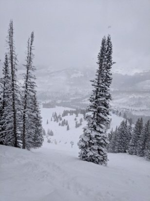 "Solitude Mountain Resort - Great day at Solitude. 12"" over night and continued all day. Awesome spring skiing! - © anonymous"