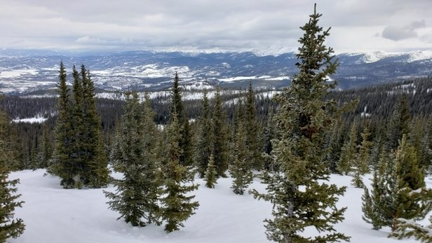 "Winter Park Resort - 4"" on top of hard packed. was awesome! Parsenn Bowl some nice powder and thru trees. - © mark harris"