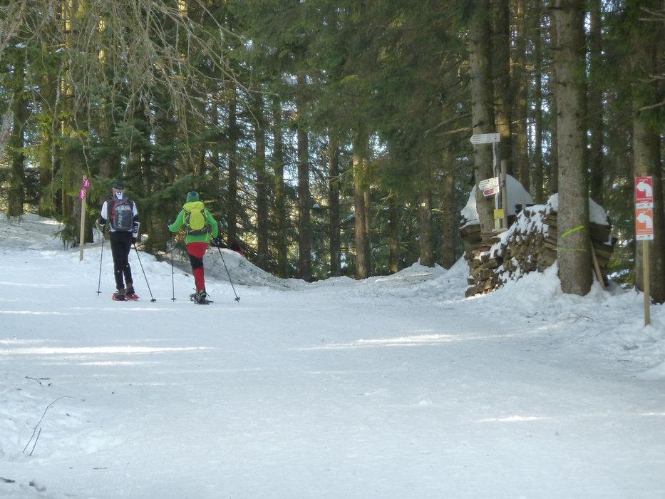 Schneeschuhwanderer am Seibelseckle - © Tourist-Info Seebach
