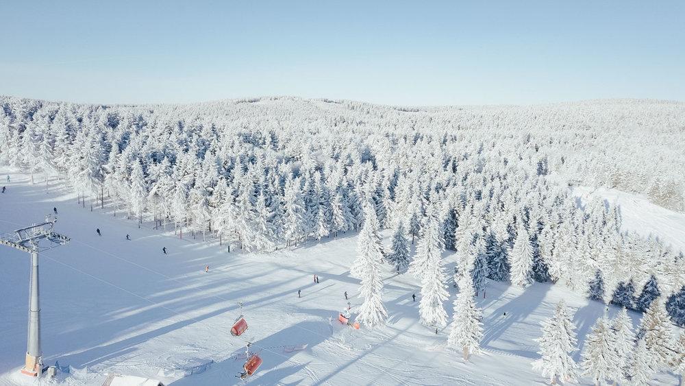 Zieleniec Ski Arena (21.01.2020) - © Zieleniec Ski Arena