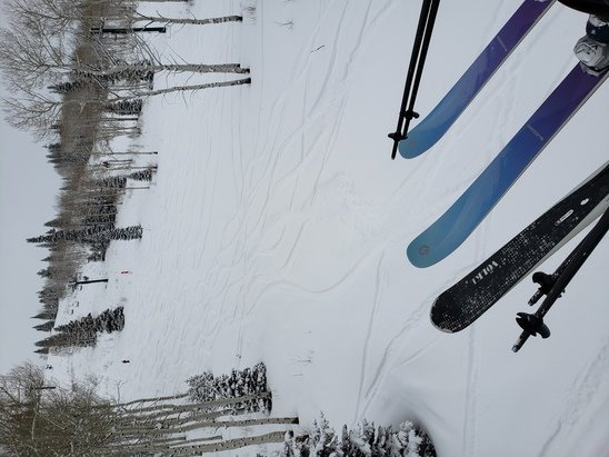 "Deer Valley Resort - 8"" overnight turned bluebird by noon on 1/5. Still uncrowded. Amazing day at DV.  - © Anonymous"
