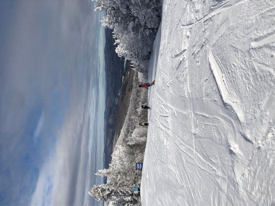 Okemo Mountain Resort - Hard packed but lots open. Early runs are the best runs. Ok to enjoy. Have a good year.  - © Anonymous