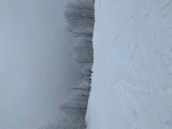 Windham Mountain - Incredible conditions with 37 inches of new snow. Best day so far.  - © James S