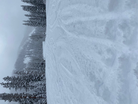 Telluride - Great powder all over the mountain, crowds and ugly lift lines died off by mid day  - © AP
