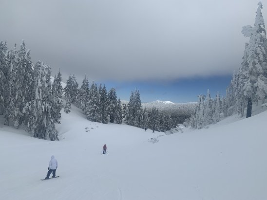 Mt. Bachelor - Great weather but the runs were icy  - © Christian P