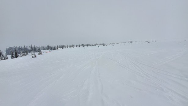 Aspen Snowmass - Powder day at Snowmass.  Conditions are amazing.  Crowds are nonexistent.  - © FM