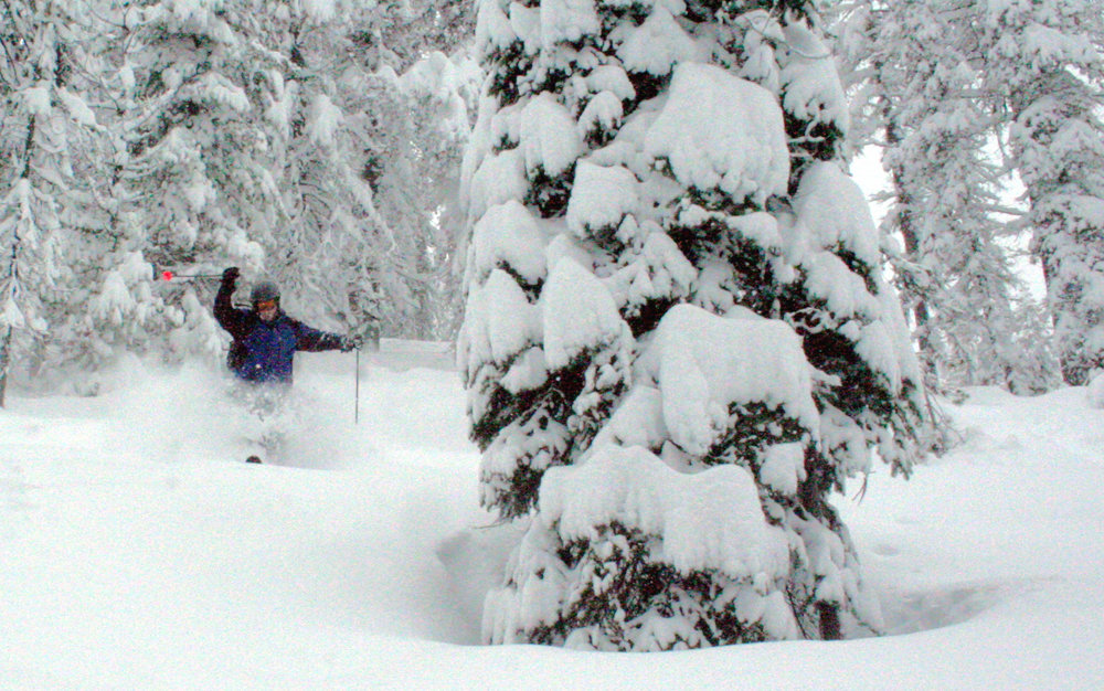 A skier sails through powder in the trees at Lookout Pass, located on the border of Idaho and Montana.