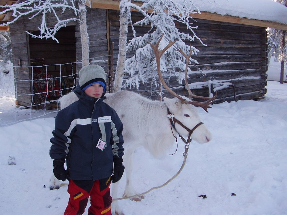 Getting to know the locals in Lapland.  - © Levi/Facebook