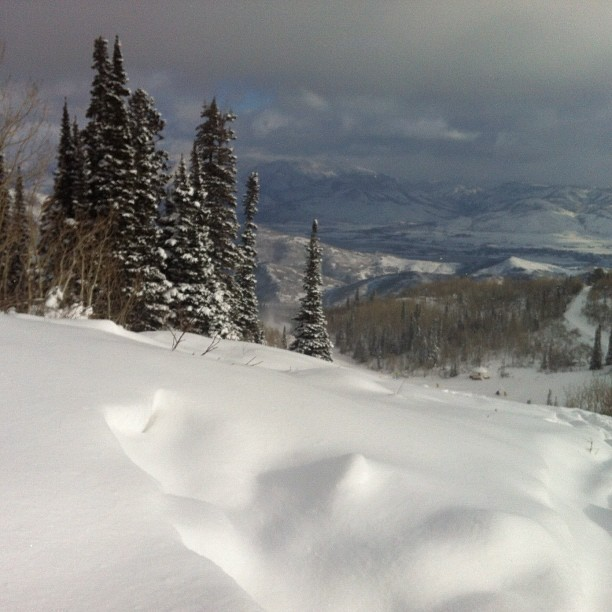 Snowbasin looks great after Winter Storm Brutus. Photo:Snowbasin/Facebook
