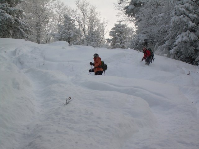 Powder at Hickory Ski Center. - © Hickory Ski Center