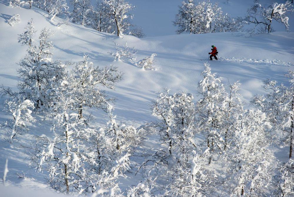 Myrkdalen powder - © Sverre Hjørnevik