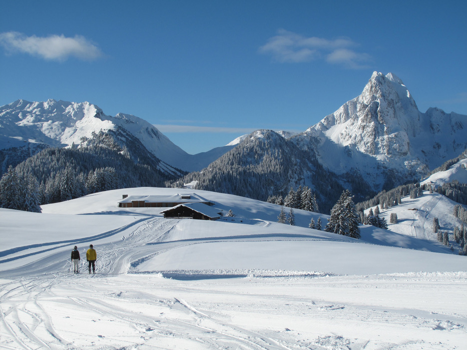 Gstaad Ski area Eggli-La Videmanette