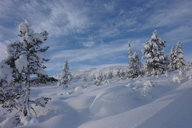 Idylliske skispor i Hallbjønnsekken