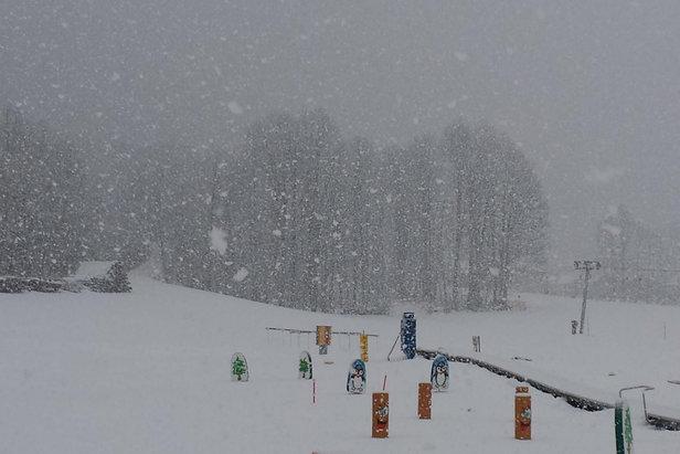 Raport śniegowy: w prognozach na weekend silne opady śniegu ©Bergbahnen Diedamskopf