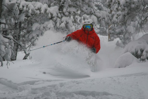 A skier sinks into powder at Eldora Mountain Resort in Colorado.  - © Eldora Mountain Resort