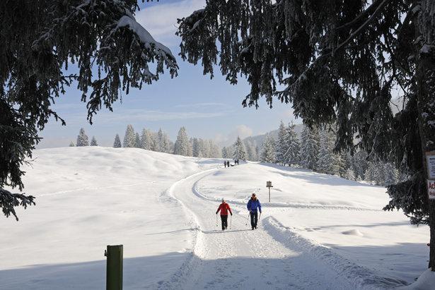 Die Bäume im Vordergrund bilden den Rahmen für das eigentliche Motiv, die Wanderer im Schnee - ©Norbert Eisele-Hein