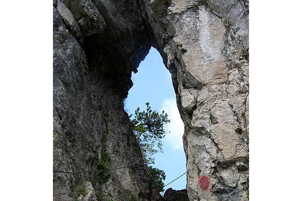 Klettersteigset Mammut Rückruf : Mammut ruft klettersteigsets zurück bergleben