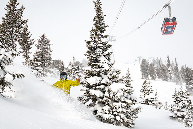 "Jackson Hole: 100"" in 2 Weeks, 7"