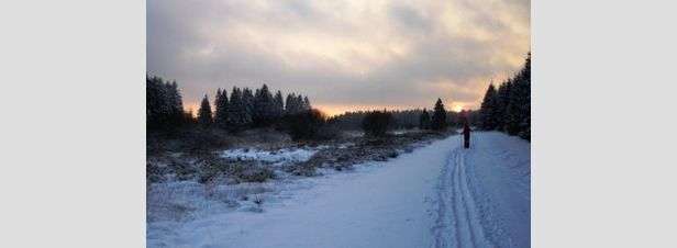 Uitstekende sneeuwcondities in de Belgische oostkantons