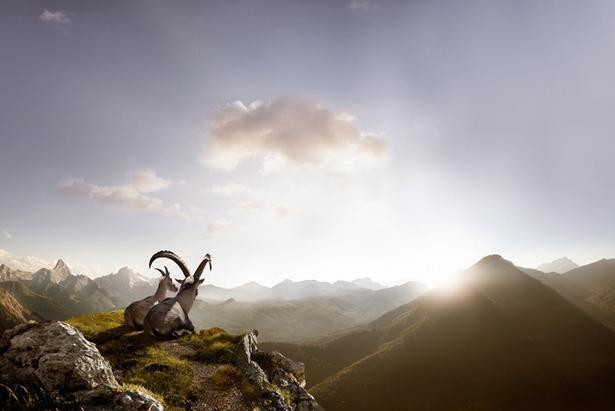 Jetzt für den Traumjob bewerben - Bergsenn in Savognin