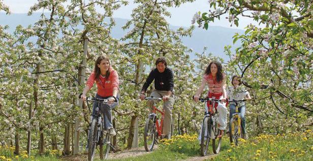 Trentino_fioritura-meli_29apr