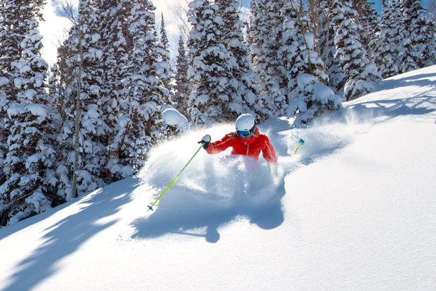 BIG SNOW ALERT: Utah Buried in Powder ©Deer Valley Resort | Scott Markewitz