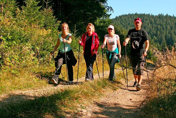 Dobře zvládnutý nordic walking je pro hubnutí lepší než běh- ©www.lanterna.cz