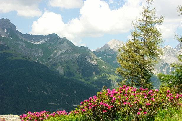 Fünf feine Wanderrouten um St. Anton am Arlberg - ©TVB St. Anton am Arlberg/Fotograf Christian Schranz