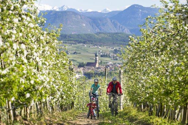Wiosenne narty w Południowym Tyrolu ©IDM Suedtirol