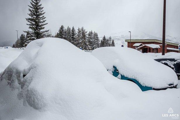 24cm of fresh snow in Les Arcs (28/1/19)