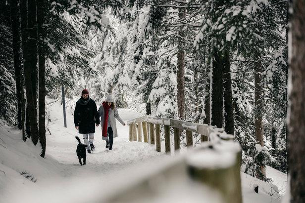 Auf 80 Kilometer wurde das Netz der Winterwanderwege in St. Anton am Arlberg erweitert  - © © Christoph Schöch/TVB St. Anton am Arlberg