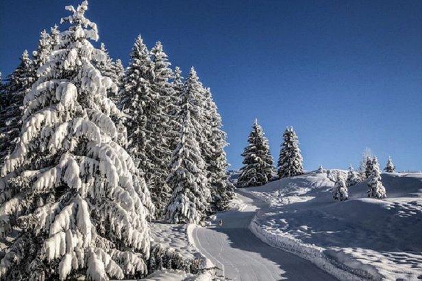 Bluebird conditions in La Clusaz (18/1/20)  - © La Clusaz/Facebook