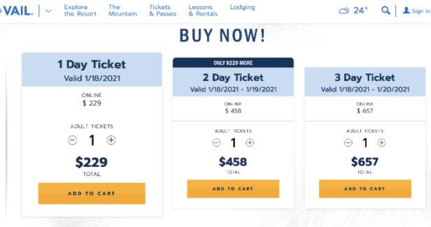 Single MLK ticket at Vail $229  - © screen grab vail.com