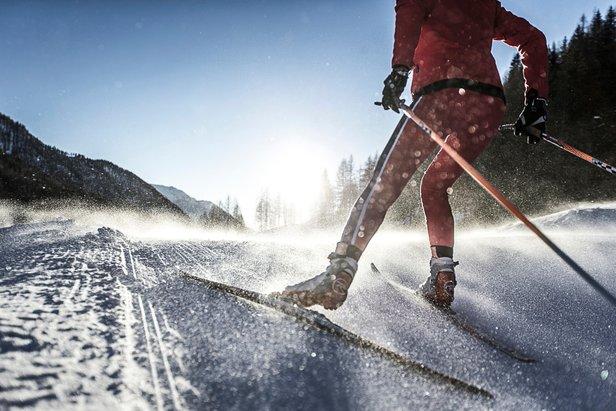 Narciarstwo biegowe  - © South Tirol