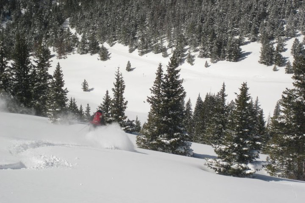 Owner/Operator/Guide Ben Bartosz shredding with Vail Powder Guides. - ©Vail Powder Guides