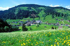 Oberau - Mühltal - ©Wildschönau