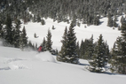 OTS Heli/Cat Guide: Vail Powder Guides - © Vail Powder Guides