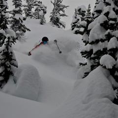 Heli skiing in BC pow - © Brigid Mander