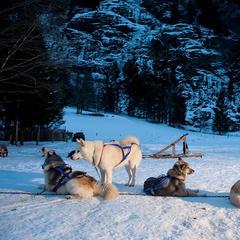 Évasion Mont Blanc : Combloux vs Les Contamines - ©Zir